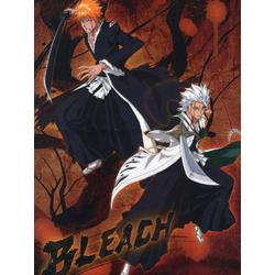 Bleach | Блич