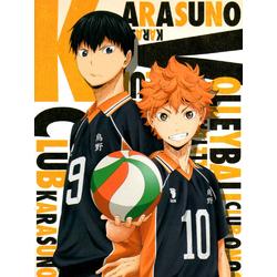 Haikyuu (Коллекция постеров)   Волейбол