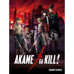 Akame ga Kill   Убийца Акамэ