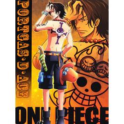 One Piece | Ван-Пис: Портгас Д Эйс