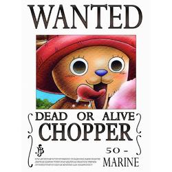 One Piece - Wanted | Ван-Пис: Тони Тони Чоппер