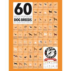 Dog Breeds | Породы собак