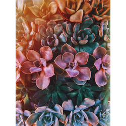 Abstraction: Colors | Абстракция: Краски