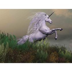 Unicorn | Единорог