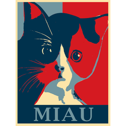 Cat | Кот | MIAU