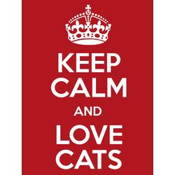 Cat | Кот | Keep Calm