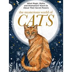 Cat | Кот | Mysterious world