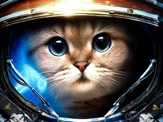 Категория постеров и плакатов Космические