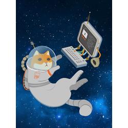 Cat Space | Кот в космосе