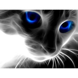 3D Poster | 3Д Постер | Кот