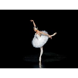 Ballerina | Балерина