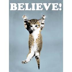 Cat | Кот | Believe