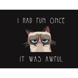 Mems | I Had Fun Once It Was Awful