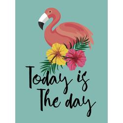 Flamingo | Фламинго | Today is the Day