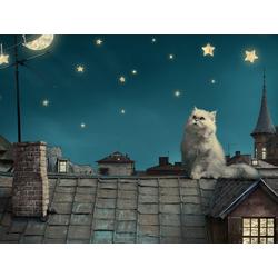 Cat: Night | Ночной Кот