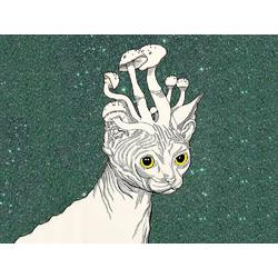 Cat: Mushrooms Art | Кот: Грибы Арт