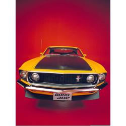Ford Mustang Boss | Форд Мустанг