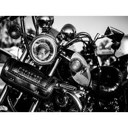 Moto Light   Фары мотоцикла