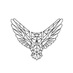 Minimal: owl | Сова