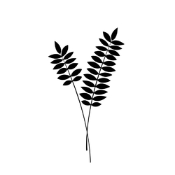 Minimal: plant | Растение
