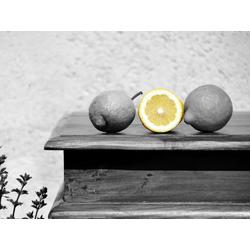 Lemon | Лимон