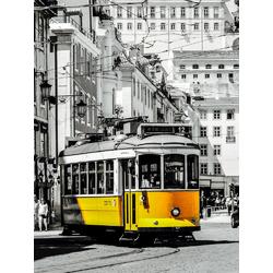 Tram | Трамвай