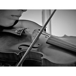 Violin | Скрипка