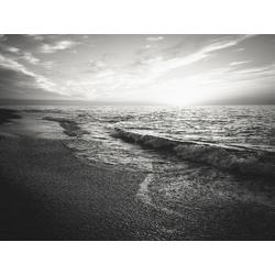 Ocean | Океан