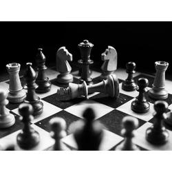 Chess | Шахматы