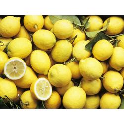 Lemons | Лимоны