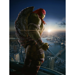 Teenage Mutant Ninja Turtles (Коллекция постеров №2) | Черепашки Ниндзя: Рафаэль
