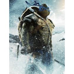 Teenage Mutant Ninja Turtles (Коллекция постеров №2) | Черепашки ниндзя: Леонардо