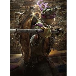 Teenage Mutant Ninja Turtles (Коллекция постеров №2) | Черепашки Ниндзя: Донателло