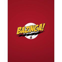 Big Bang Theory: Bazzinga | Теория Большого Взрыва