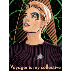 Star Trek - Voyager is my collective   Звездный путь