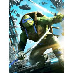 Teenage Mutant Ninja Turtles: Leonardo | Черепашки ниндзя: Леонардо
