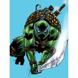Teenage Mutant Ninja Turtles (Коллекция постеров №4) | Черепашки ниндзя: Леонардо