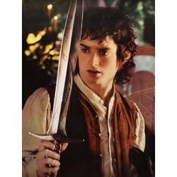 The Lord of the Rings   Властелин Колец: Фродо