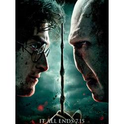Harry Potter | Гарри Поттер и Волан-де-Морт