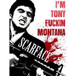 Scarface: I'm Tony Montana | Лицо со шрамом