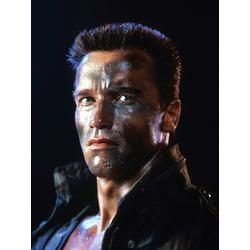 Arnold Schwarzenegger   Арнольд Шварценеггер