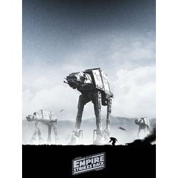 Star Wars: Collection 4 | Звездные войны: Коллекция постеров 4