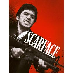 Scarface | Лицо со шрамом
