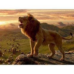 Lion King | Король Лев