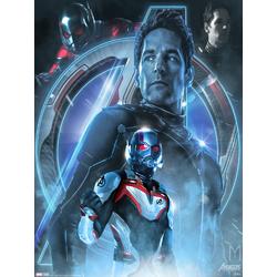 Avengers: Endgame Collection (Коллекция постеров) 3 | Мстители: Финал | Человек муравей