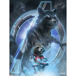 Avengers: Endgame Collection (Коллекция постеров) 3 | Мстители: Финал | Ракета