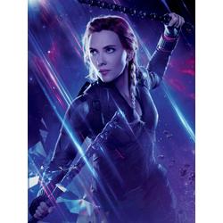 Avengers: Endgame Collection (Коллекция постеров) 4 | Мстители: Финал | Черная вдова