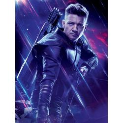 Avengers: Endgame Collection (Коллекция постеров) 4 | Мстители: Финал | Соколиный глаз