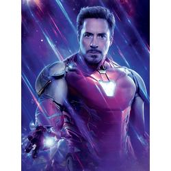 Avengers: Endgame Collection (Коллекция постеров) 4 | Мстители: Финал | Железный человек