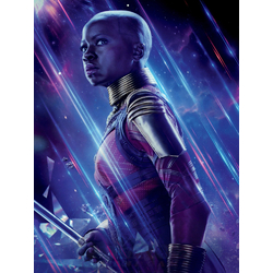 Avengers: Endgame Collection (Коллекция постеров) 4 | Мстители: Финал | Окойе
